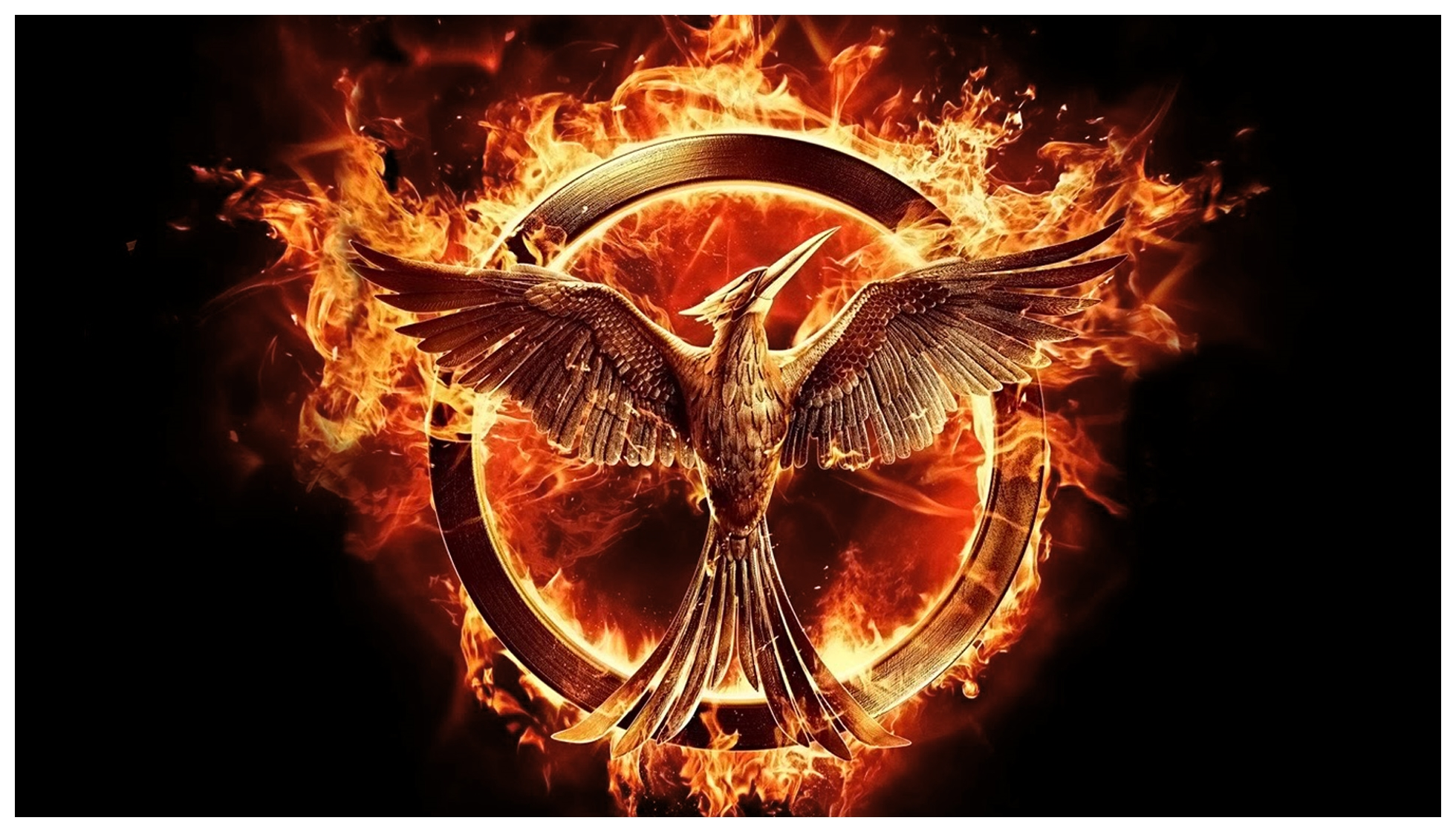 the-hunger-games-mockingjay-part-1-53b19e0a32efb-which-hg-theory-was-your-favorite-what-did-you-think-of-mockingjay-part-1.jpg