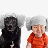 Csatornatöltelékből lett fotómodell ez a menhelyi kutya