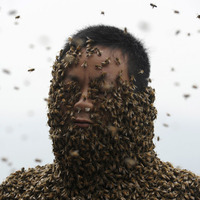 Méhszoborrá változott a férfi
