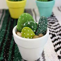 Szúrásmentes kaktuszok kavicsokból