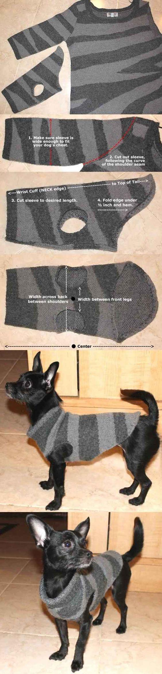 402350a948 Kutyaruha pulóverből - DIY Project
