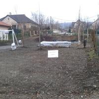 Füvesítés, padok, szemetesek, növények a helyükön