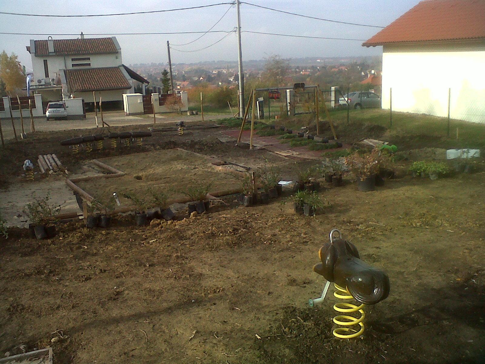 IMG-20121110-00526.jpg