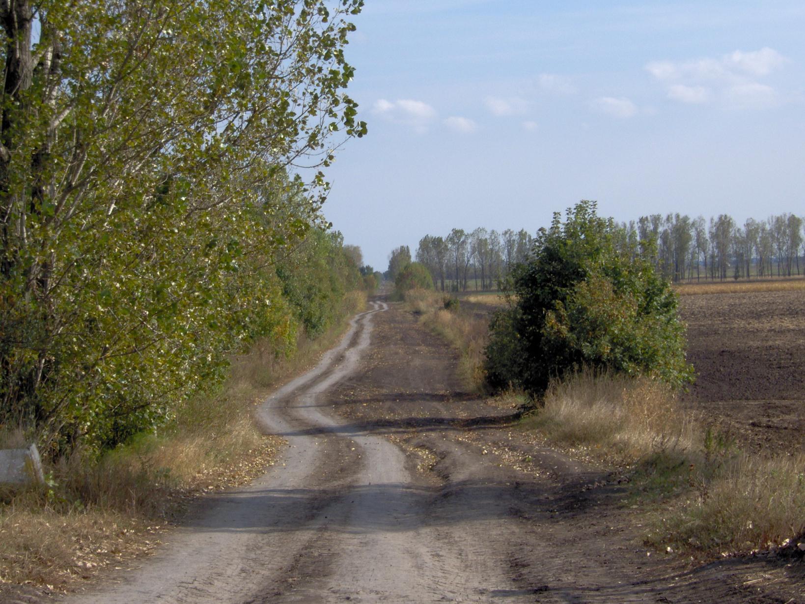 út Ecsérre