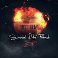 "(stream) Mobb Deep ""Survival of the Fittest EP"""