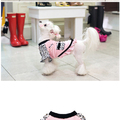 ParisDog - Momoco mini dress