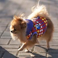 ParisDog - Bonjour kutyakabát piros