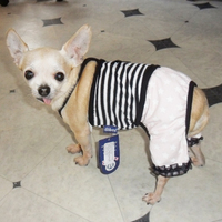 Dobaz - Fashion stripes overall