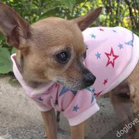 Termékbemutató - Rózsaszín csillagos kutyapuli