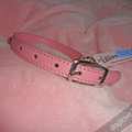 Termékbemutató - Rózsaszín szolid nyakörv