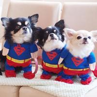 Superman jelmezek