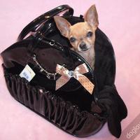 Termékbemutató - Exclusive fekete lakk kutyahordozó