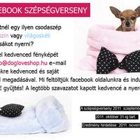 Facebook - DogLove Shop szépségverseny