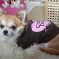 Termékbemutató - Barna kapucnis pulóver