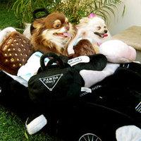 Termékbemutató - Fekete autó kutyafekhely