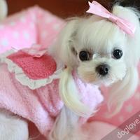 Termékbemutató - Szívecskés kutyamellény