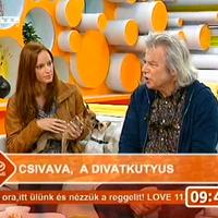 Csivava majális - RTL Klub : Reggeli csak csajok 2.