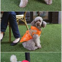 ParisDog - Western kutyakabát