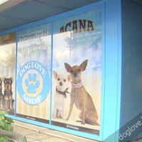 DogLove Shop - Új kirakat
