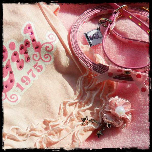 csajos_pink.jpg