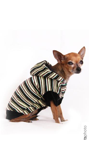 csikos_pulover01.jpg