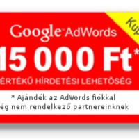 Google adwords kupon ajándékba.