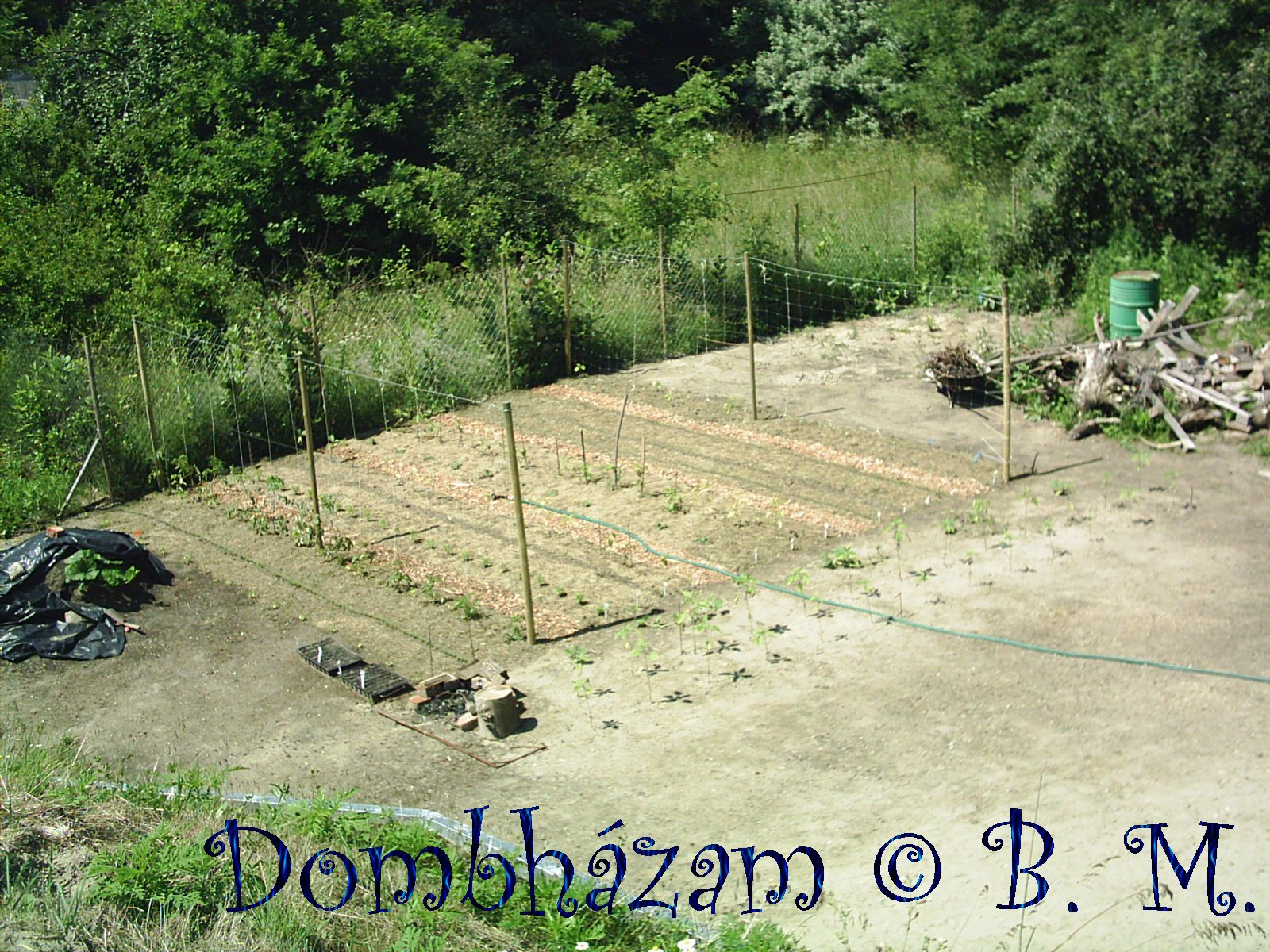 2008_06_20s.JPG