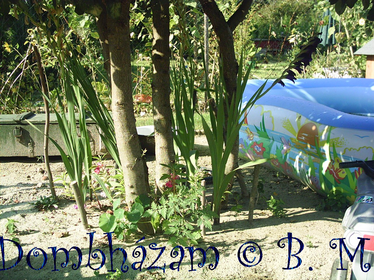 2008_08_22-09h_09m_42s.JPG