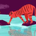 Ne hagyd magad, tigriske!