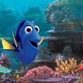 Szenilla nem vénül, avagy óda a Pixarhoz