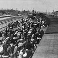 Mi a baj a kötelező holokauszt tárggyal?