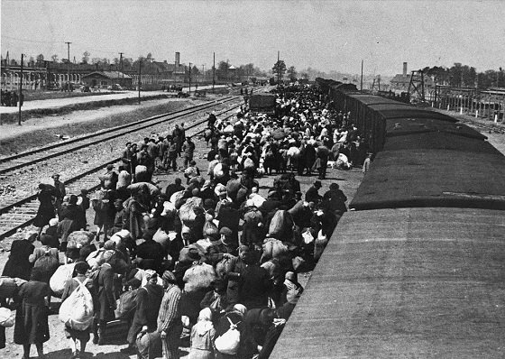 roma-holokauszt.jpg