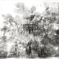 SUB LUNA - Awake! CD (Cyclic Law, 2010)