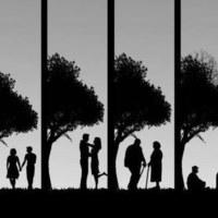 Házastárs mint örökös