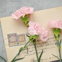 El nem küldött levelek