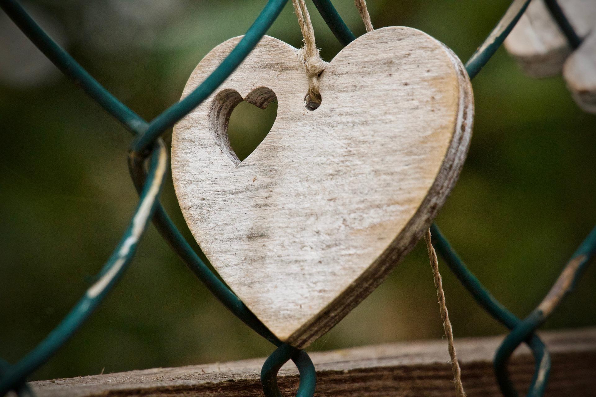heart-3822849_1920.jpg