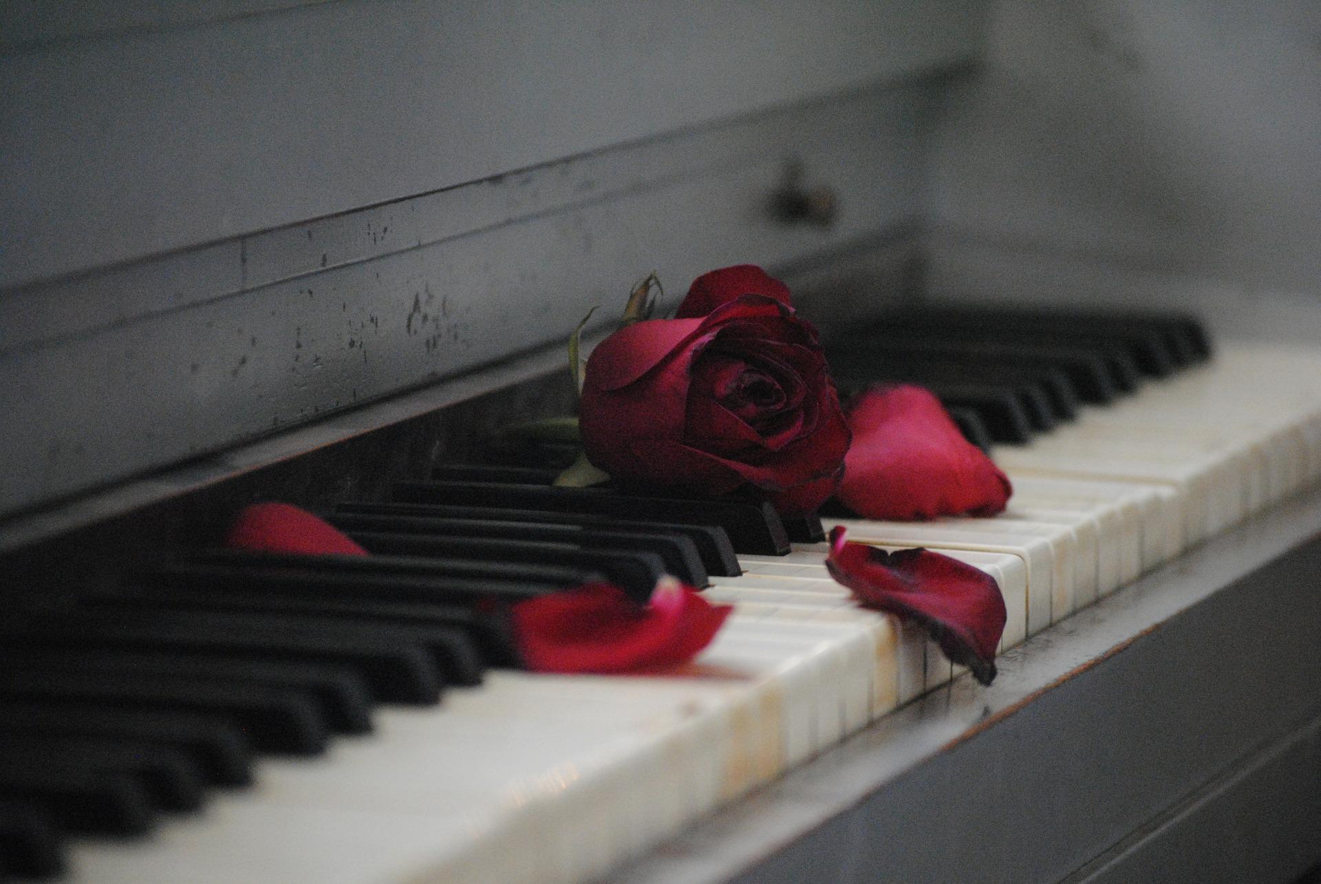 piano-571968_1920.jpg