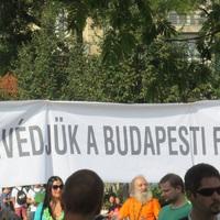 55 fa menekül meg Mészáros Lőrinctől