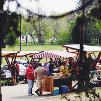 PIACOZZUNK: AZ ŐRISZENTPÉTERI TERMELŐI PIAC (Farmers' market in Őriszentpéter)
