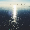 MÉG PONT ELCSÍPTÜK (Frozen Lake Balaton)
