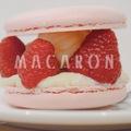 A TÖKÉLETES MACARON NYOMÁBAN: FALATNYI PÁRIZS DODO-NÁL BUDAPESTEN (A piece of Paris: macarons at Chez Dodo Artisian Macarons & Café in Budapest)