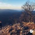 ÉVINDÍTÓ A PRÉDIKÁLÓSZÉKEN ÉS A VADÁLLÓ-KÖVEKNÉL (Hiking in Pilis)