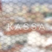 FÉL NAP KASSÁN (Visit Kassa)