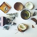 TEÁZZUNK: KÓKUSZOS ZÖLD TEA (Green Tea with Coconut by Harney and Sons Fine Teas)