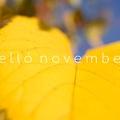 HELLÓ NOVEMBER!