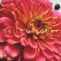 HELLÓ OKTÓBER! (Hello October!)