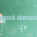 HELLÓ JÚNIUS! (Hello June!)
