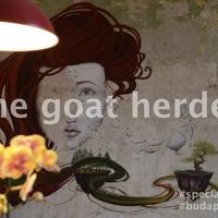 DRÚJHULLÁM: THE GOAT HERDER AVAGY A KECSKEPÁSZTOR ESETE (Specialty cafe The Goat Herder in Budapest)