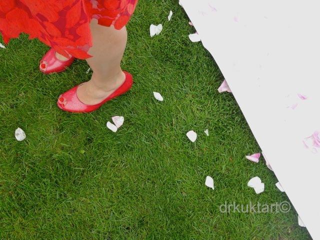 drkuktartbelgianwedding39.jpg