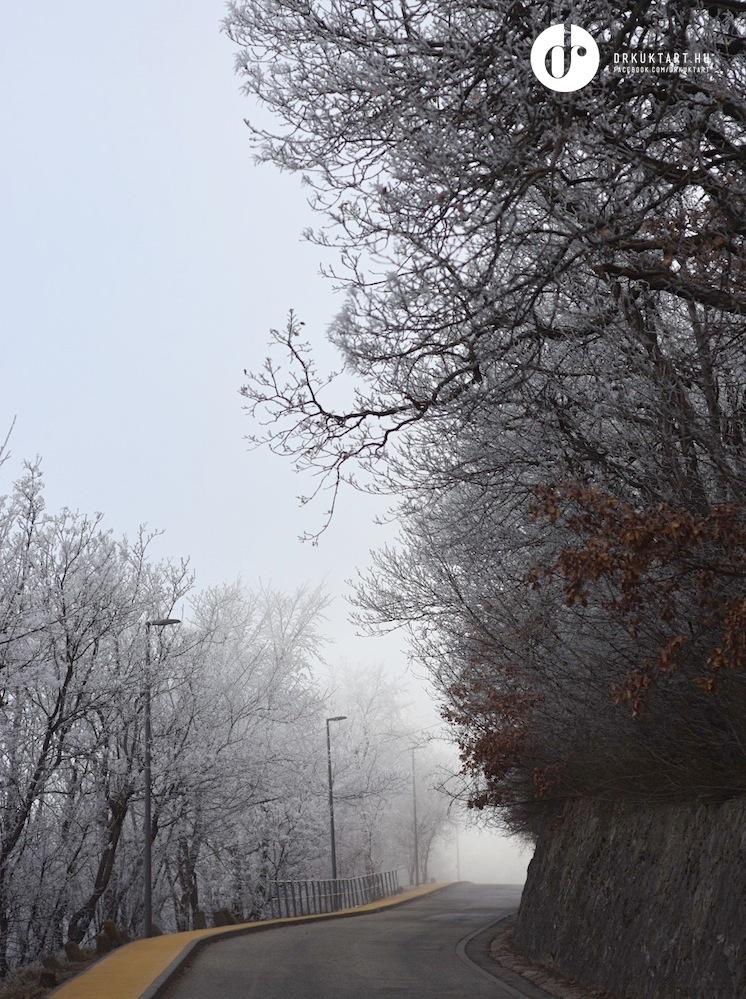 drkuktart_budapest2020januar_12_ja_noshegy.JPG